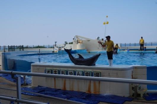 幼児(5歳と2歳)を連れた沖縄旅行の美ら海水族館