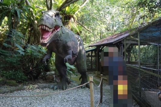 幼児(5歳と2歳)を連れた沖縄旅行のDINO恐竜PARK