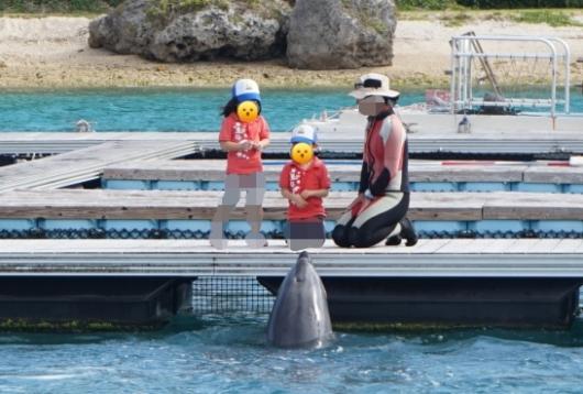 幼児(5歳と2歳)を連れた沖縄旅行のもとぶ元気村