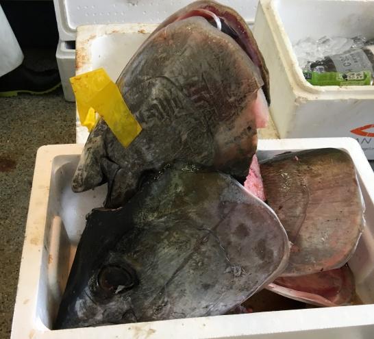 魚広場ナルミ杉本のマグロ販売