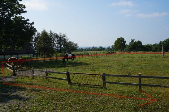 ハイジ牧場の乗馬体験の距離が長い