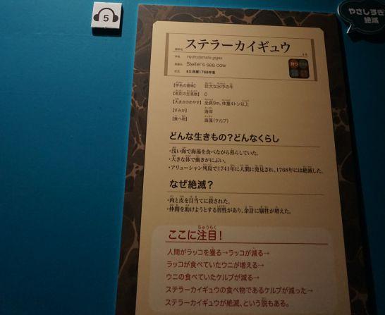 名古屋市科学館の特別展『絶滅動物研究所』のステラーカイギュウの展示パネル