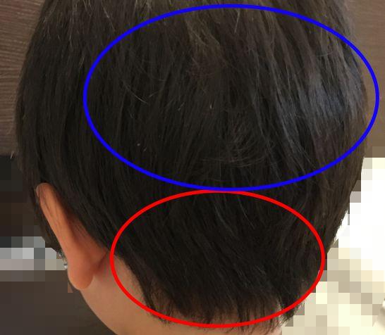 ヘアカット前の後ろ側の髪の毛