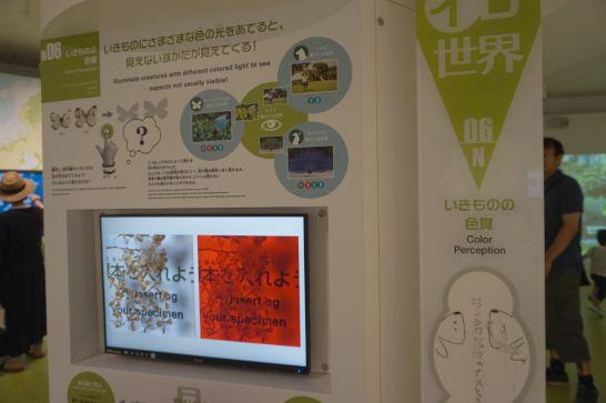 浜松科学館みらいーらの自然ゾーンの色照射装置