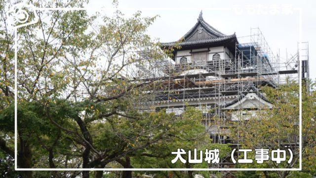 犬山城は幼児も楽しめるのか、おすすめポイントをまとめた子連れ現地レポ