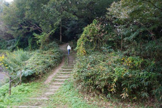 岡崎市東公園へのショートカット