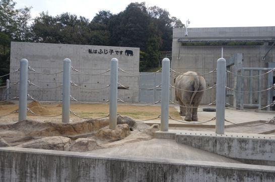 岡崎市東公園動物園の像