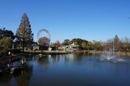 堀内公園の池と噴水と虹