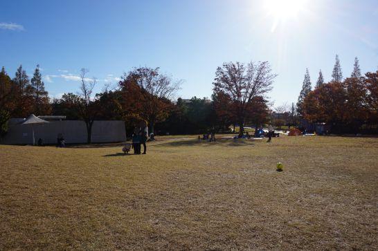 堀内公園の芝生広場