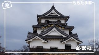 彦根城、彦根城博物館、玄宮園を子連れでお得に楽しもう!口コミ・体験レポ