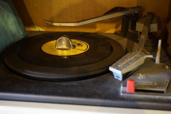 ぎふ清流里山公園のかいこの家のレコード