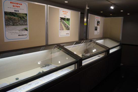 橿原市昆虫館の本館二階の展示室