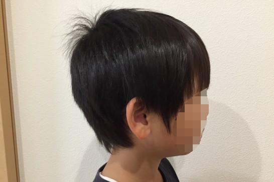 Panasonicのカットモードの使用例:使用前(耳周り)
